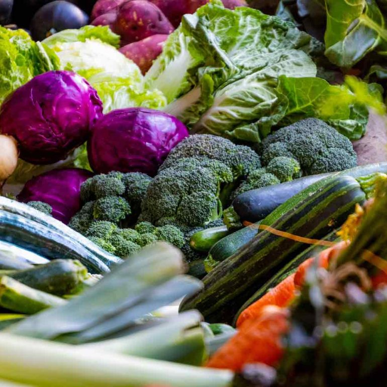 Cancer Prevention with a Healthy Diet