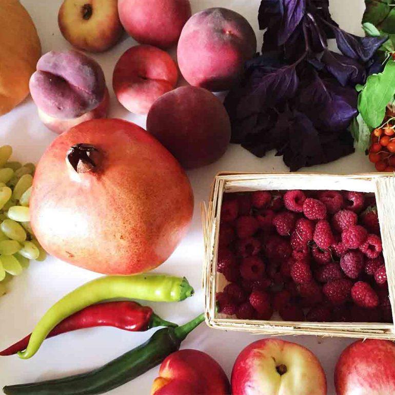Seasonal Eating and Nutrition