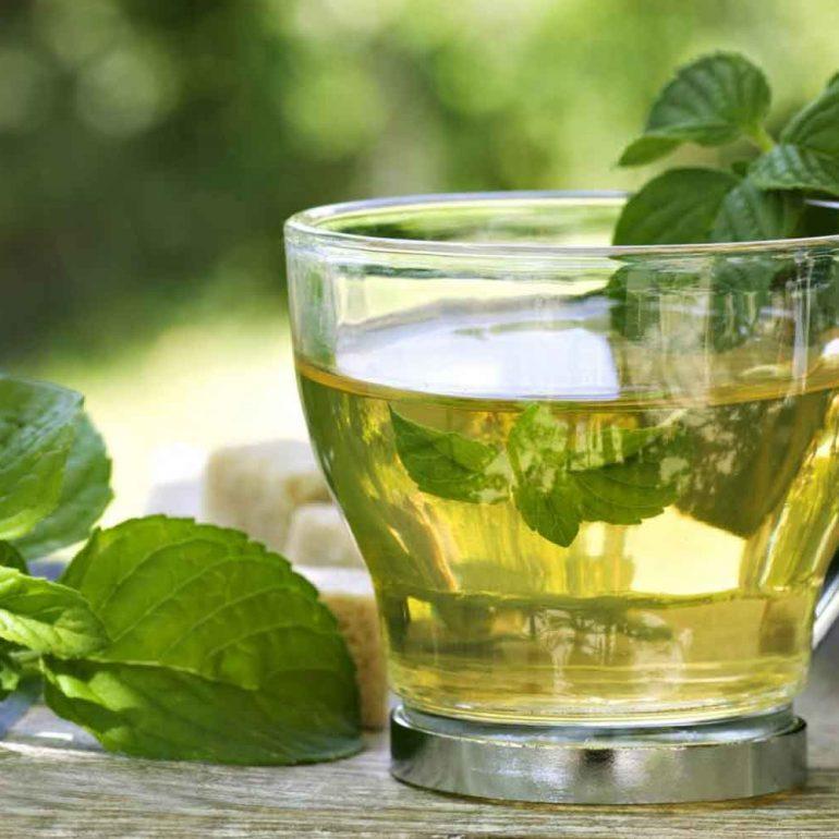Drinking Fresh Peppermint Tea